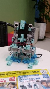 2018ロボットプログラミング サイズ小
